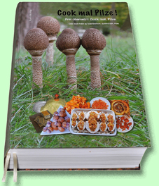 Beispielseite von Cook mal Pilze