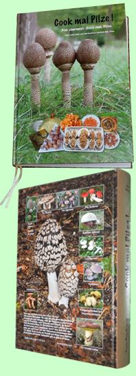 Deckblatt Cook mal Pilze